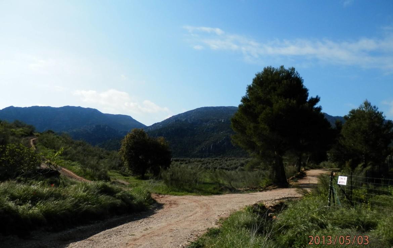 674 OPG 700 Jaén 6 1170x738 - Finca de 700 has, de recreo y caza muy próxima a Jaén