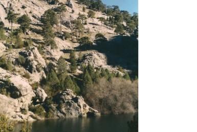 880 9 385x258 - Finca de 600 hectáreas en Cazorla (Jaén) de recreo con pastos para ganado, mucha agua y caza