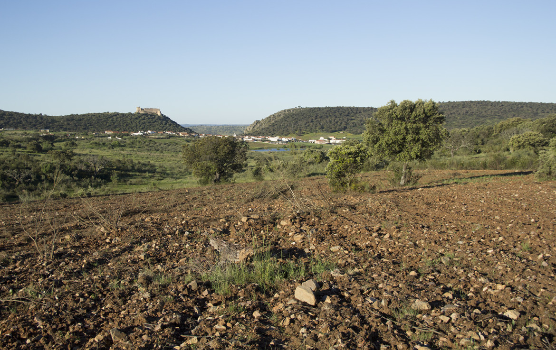 941 OPP Fincas Rústicas SurOEste 2 1170x738 - Finca de 17 hectáreas de alcornoque y encinas en zona Cañaveral (Cáceres)