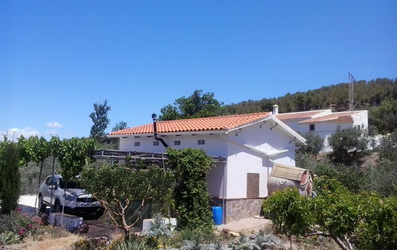 942 OPC 1170x738 - Parcela en Alcudia de Guadix de 4.800m2, con casa de 35m2