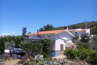 942 OPC 385x258 - Parcela en Alcudia de Guadix de 4.800m2, con casa de 35m2