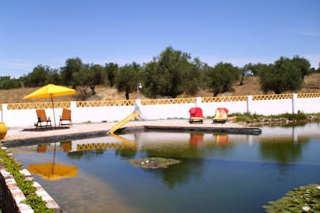 083 OPP Fincas Rústicas SurOeste - Precioso complejo de Turismo Rural en finca de 19 has cerca del pantano de Alqueva en Portugal