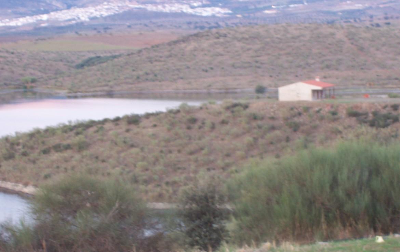 088 ORP Fincas Rústicas SurOeste 4 1170x738 - Finca de 4 has con chalet nuevo casi terminado, en pantano de Hornachos