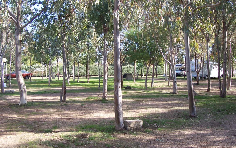 095 OPP Fincas Rústicas SurOEste 2 1170x738 - Camping a pleno rendimiento en Mérida, con 13 bungalow, instalaciones con todos los servicios