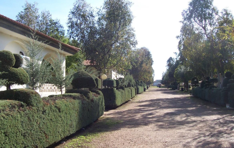 095 OPP Fincas Rústicas SurOEste 8 1170x738 - Camping a pleno rendimiento en Mérida, con 13 bungalow, instalaciones con todos los servicios