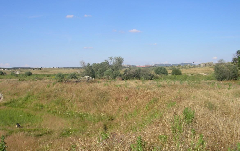 096 OPP Fincas Rústicas SurOeste 1 1170x738 - Finca 31 has muy cerca de Cáceres toda cercada con mucha agua