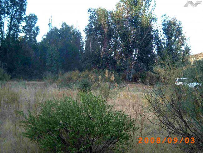 115 OPP 50 Zalamea 2 - Finca de 50 has de recreo y caza zona de Zalamea de la Serena