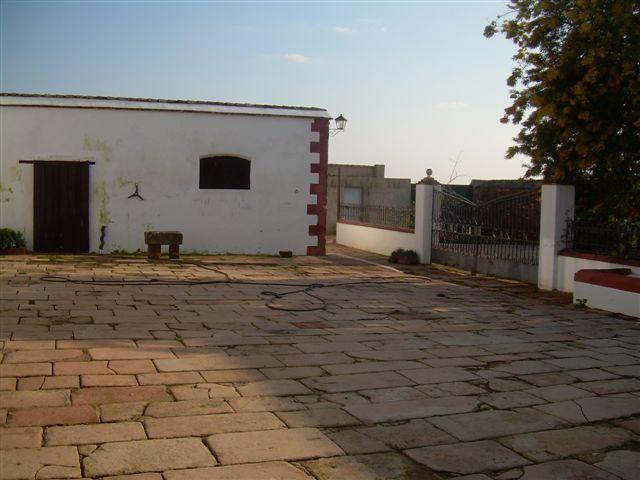 235 OPP Fincas Rústicas SurOeste - Finca de 16 has de olivos a 55 km de Córdoba