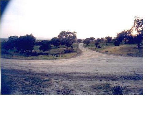 311 OPC Fincas Rústicas SurOeste 1 - Vendo parcela de 10.000 metros, Mérida