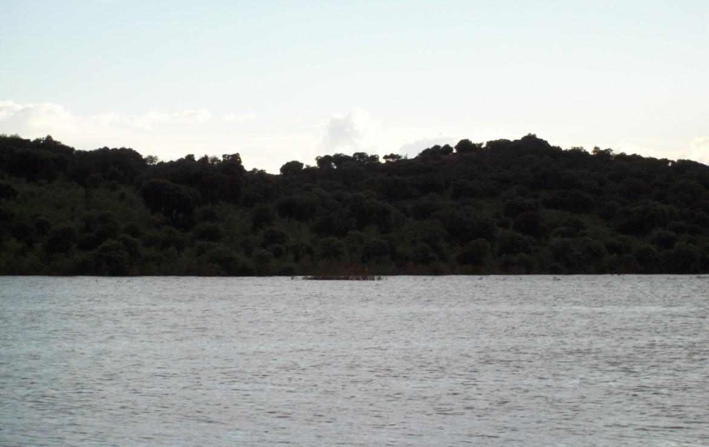 345 OPP Fincas Rústicas SurOeste 2 1170x738 - Finca de 6 has en la orilla de pantano de Alange