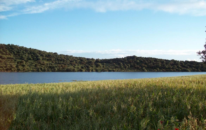 345 OPP Fincas Rústicas SurOeste 3 1170x738 - Finca de 6 has en la orilla de pantano de Alange