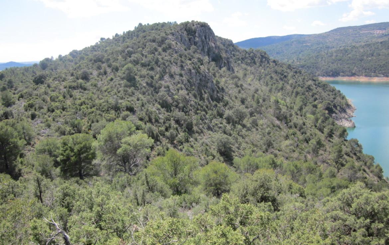369 OPP 7 1170x738 - Finca de aprox. 50 hectáreas a orillas del embalse de Entrepeñas (Guadalajara)