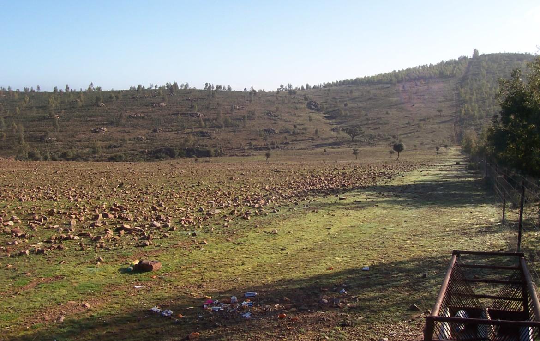 077 OPG Fincas Rústicas SurOeste 3 1170x738 - Finca de 110 hectáreas en el centro de la provincia de Badajoz. Montes, pastos y caza.