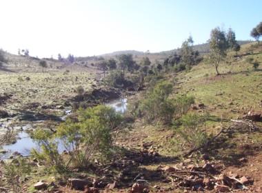 077 OPG Fincas Rústicas SurOeste 380x280 - Finca de 110 hectáreas en el centro de la provincia de Badajoz. Montes, pastos y caza.