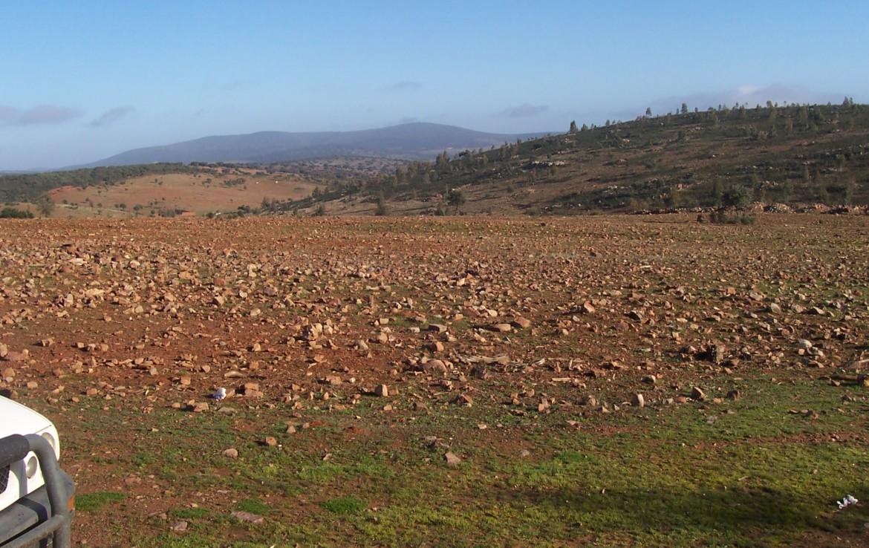 077 OPG Fincas Rústicas SurOeste 4 1170x738 - Finca de 110 hectáreas en el centro de la provincia de Badajoz. Montes, pastos y caza.