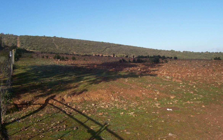 077 OPG Fincas Rústicas SurOeste 5 1170x738 - Finca de 110 hectáreas en el centro de la provincia de Badajoz. Montes, pastos y caza.