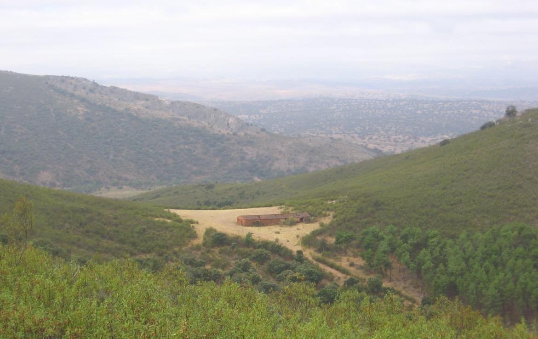 106 OPM Fincas Rústicas SurOeste 1 1170x738 - Muy buena finca de caza en Sierra San Pedro (Santiago de Alcántara) de 560 has, muy bien comunicada