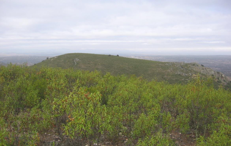 106 OPM Fincas Rústicas SurOeste 1170x738 - Muy buena finca de caza en Sierra San Pedro (Santiago de Alcántara) de 560 has, muy bien comunicada