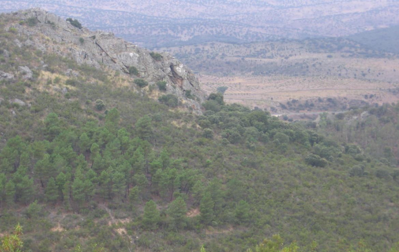 106 OPM Fincas Rústicas SurOeste 2 1170x738 - Muy buena finca de caza en Sierra San Pedro (Santiago de Alcántara) de 560 has, muy bien comunicada