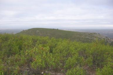 106 OPM Fincas Rústicas SurOeste 385x258 - Muy buena finca de caza en Sierra San Pedro (Santiago de Alcántara) de 560 has, muy bien comunicada