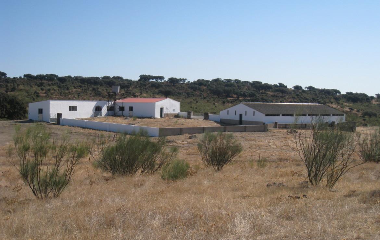 108 OPM Fincas Rústicas SurOEste 6 1170x738 - Finca cerca de 400 has a 25 km de Cáceres. Registro porcino, 1500m2 de naves, depósitos, molinos…Mucha agua