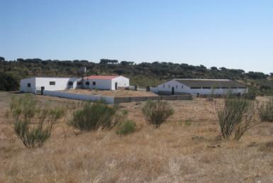 108 OPM Fincas Rústicas SurOEste 6 385x258 - Finca cerca de 400 has a 25 km de Cáceres. Registro porcino, 1500m2 de naves, depósitos, molinos…Mucha agua