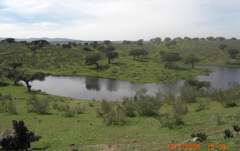 144 OPG. Fincas Rústicas SurOeste 1 1170x738 - Finca en Valencia de Alcántara 320 has ampliables a 520