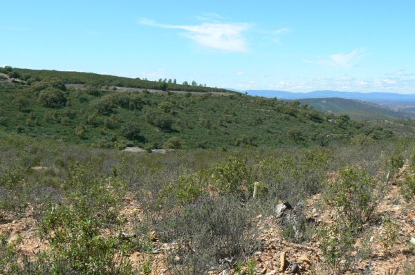 154 OPG Fincas Rústicas SurOeste 2 - Finca de 180 ha. de monte y caza, zona Santiago de Alcántara