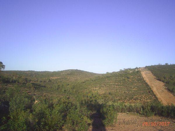 154 OPG Fincas Rústicas SurOeste 5 - Finca de 180 ha. de monte y caza, zona Santiago de Alcántara