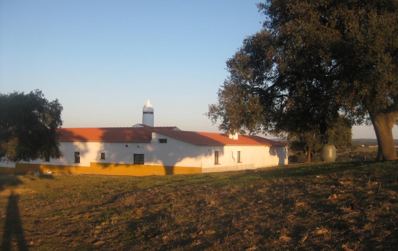 458 OPP Fincas Rústicas SurOeste 3 1170x738 - Finca de 50 has en Moura ( Portugal), 34 has de regadío y resto de encinado