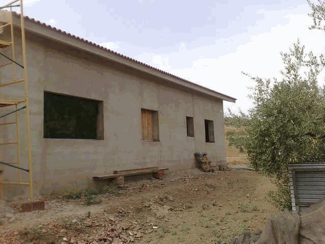 469 OPP Fincas Rústicas SurOeste 1 - Finca de 16 has de olivar de secano con casa nueva en la zona de Azuaga
