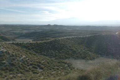 476 OPG Fincas Rústicas SurOeste 2 385x258 - Finca de 530 has de recreo y caza en Granada