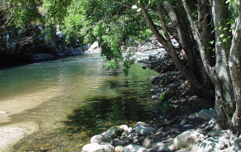 534 OPG Fincas Rústicas SurOeste 1 1170x738 - Espectacular finca de recreo y caza en la Vera de Cáceres, 450 ha