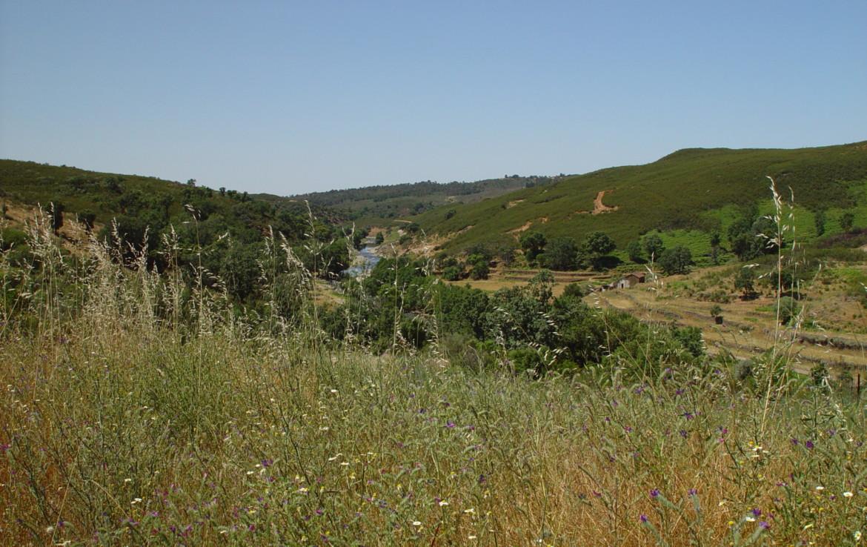 534 OPG Fincas Rústicas SurOeste 2 1170x738 - Espectacular finca de recreo y caza en la Vera de Cáceres, 450 ha