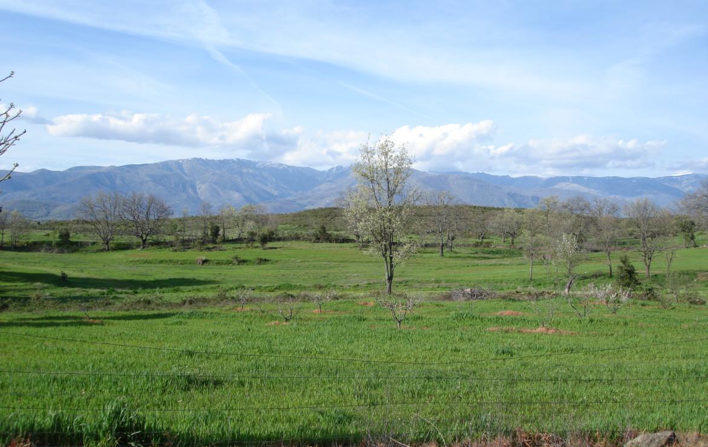 534 OPG Fincas Rústicas SurOeste 3 1170x738 - Espectacular finca de recreo y caza en la Vera de Cáceres, 450 ha