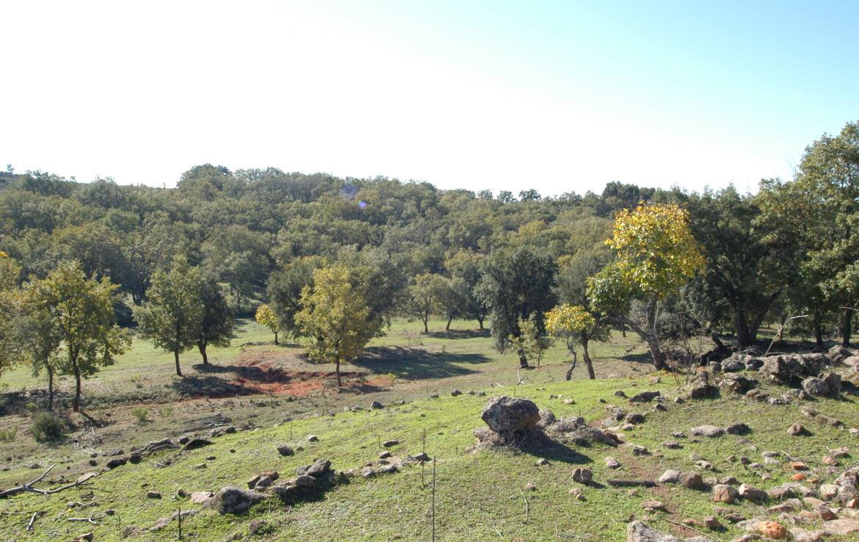534 OPG Fincas Rústicas SurOeste 4 1170x738 - Espectacular finca de recreo y caza en la Vera de Cáceres, 450 ha