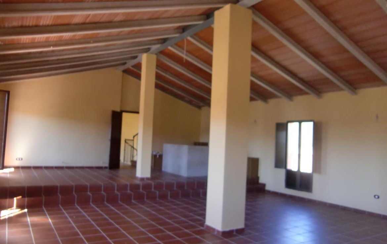541 OPM Fincas Rústicas SurOeste 1170x738 - Bonita finca de recreo, caza y ganadera de 170 has en la zona de Zafra (Badajoz)