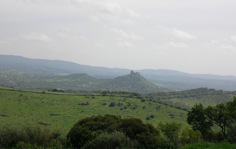 541 OPM Fincas Rústicas SurOeste 3 1170x738 - Bonita finca de recreo, caza y ganadera de 170 has en la zona de Zafra (Badajoz)