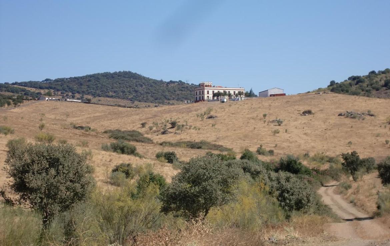 541 OPM Fincas Rústicas SurOeste 4 1170x738 - Bonita finca de recreo, caza y ganadera de 170 has en la zona de Zafra (Badajoz)