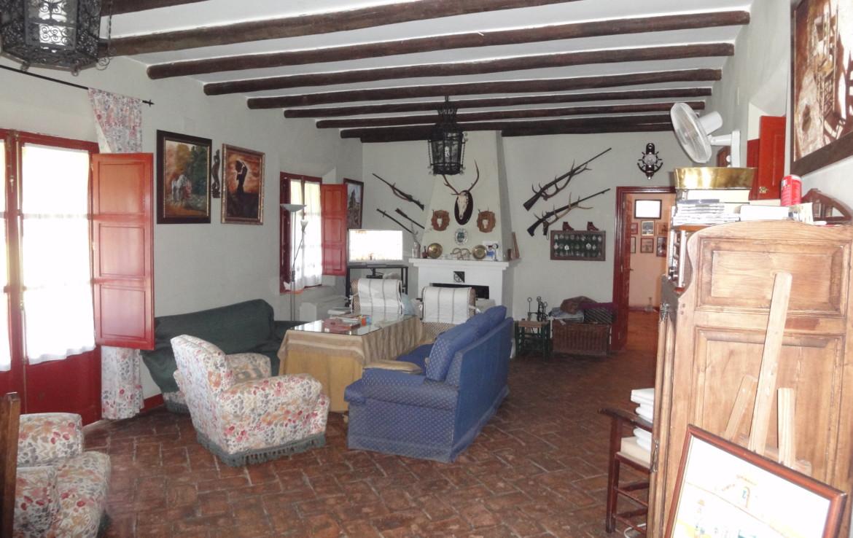 675 OPP Fincas Rústicas SurOeste 3 1170x738 - Finca de 70 has a 27 km de Sevilla, en Sierra Norte