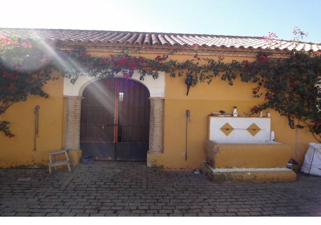 675 OPP Fincas Rústicas SurOeste - Finca de 70 has a 27 km de Sevilla, en Sierra Norte