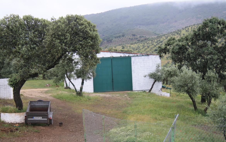 865 OPP Fincas Rústicas SurOeste 3 1170x738 - Finca de 32 has en el Valle de los Pedroches (Córdoba)