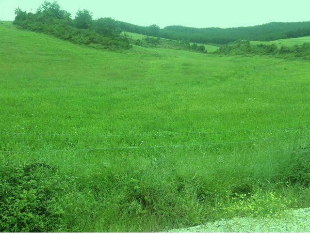 1044 OPG Fincas Rústicas SurOeste 1 - Finca de 225 hectáreas en Navarra, 100 has de pradera cultivables. Mucha agua, naves e instalaciones