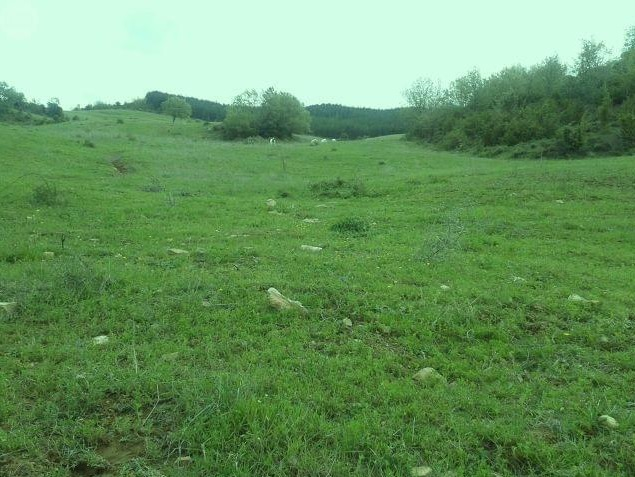1044 OPG Fincas Rústicas SurOeste 4 - Finca de 225 hectáreas en Navarra, 100 has de pradera cultivables. Mucha agua, naves e instalaciones