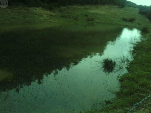 1044 OPG Fincas Rústicas SurOeste 5 - Finca de 225 hectáreas en Navarra, 100 has de pradera cultivables. Mucha agua, naves e instalaciones