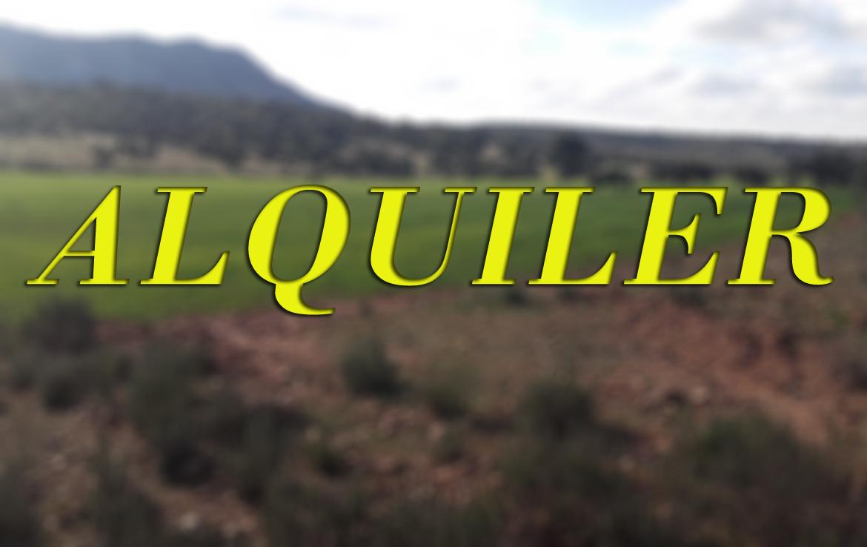 ALQUILER - Busco finca de alquiler de pastos para vacas, de unas 350 has y cerca de Badajoz capital
