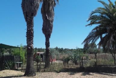 1058 OPP Fincas Rústicas SurOeste 5 385x258 - Parcela de 4.5 hectáreas a diez minutos de Mérida. Vega de rio, casa 100m2, ideal caballos, o cultivo en secano o regadío