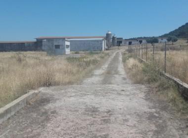 1060 OPP Fincas Rústicas SurOEste 1 380x280 - Finca de 5.2 hectáreas con instalaciones para granja de cochinos, a 10 minutos de Mérida