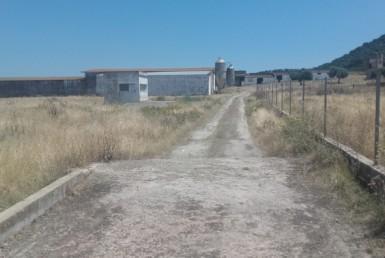 1060 OPP Fincas Rústicas SurOEste 1 385x258 - Finca de 5.2 hectáreas con instalaciones para granja de cochinos, a 10 minutos de Mérida