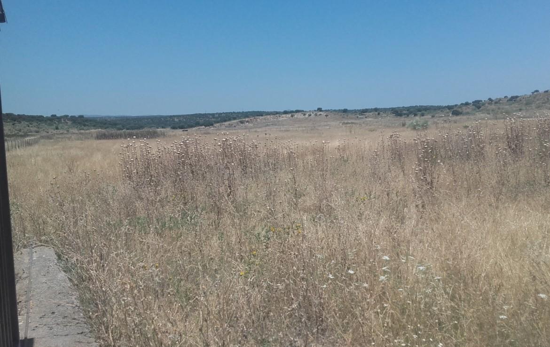 1060 OPP Fincas Rústicas SurOEste 2 1170x738 - Finca de 5.2 hectáreas con instalaciones para granja de cochinos, a 10 minutos de Mérida